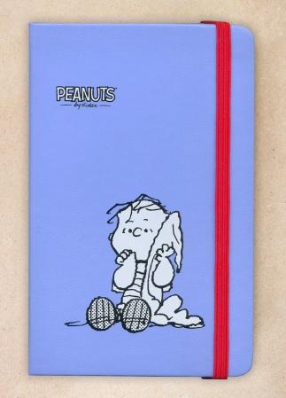 Peanuts Moleskin (1)